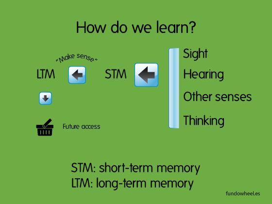 STM-LTM